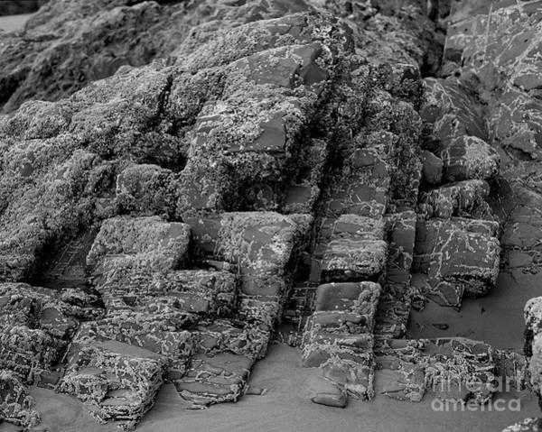 Greetingcards Photograph - Rock Detail Oregon Coast by Arni Katz