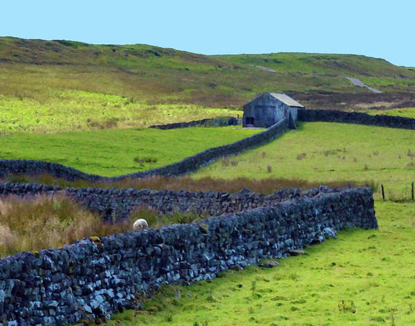 Photograph - Rock Fence At Hadrian's Wall by Coleman Mattingly