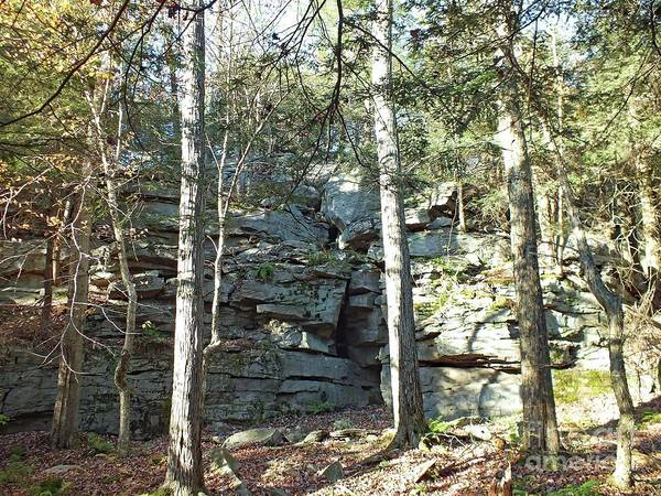Sullivan County Photograph - Rock Formation 3 - Ricketts Glen by Cindy Treger