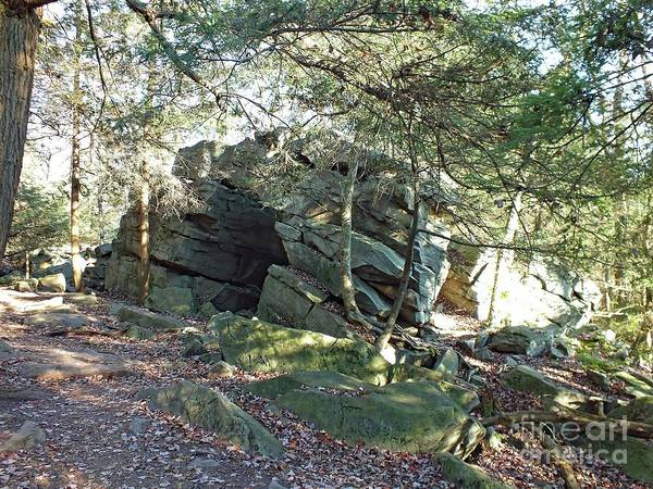 Sullivan County Photograph - Rock Formation - Ricketts Glen by Cindy Treger