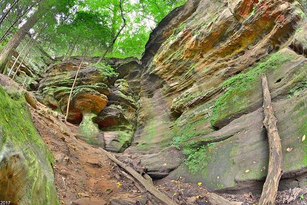 Photograph - Rock House From The Outside Hocking Hills Ohio by Lisa Wooten