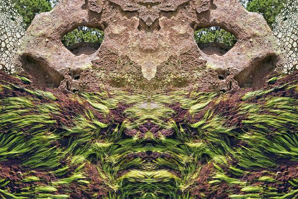 Digital Art - Rock Lion by Becky Titus