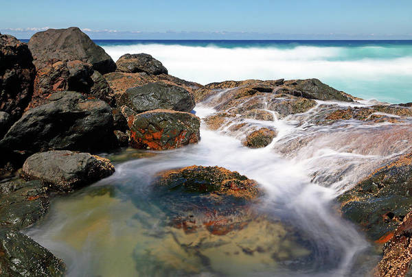 Photograph - Rock Pool by Nicholas Blackwell