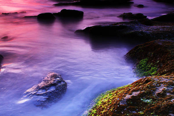 Moss Green Photograph - Rock Pool Sunrise by Marcus Adkins