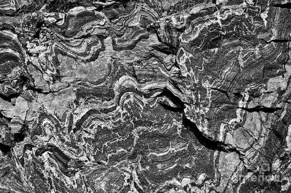 Photograph - Rock Veins - Monochrome by Les Palenik