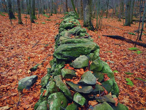 Photograph - Rock Wall Along The Appalachian Trail In New Jersey by Raymond Salani III