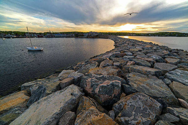 Photograph - Rockport Ma Bearskin Neck Breakwater by Toby McGuire
