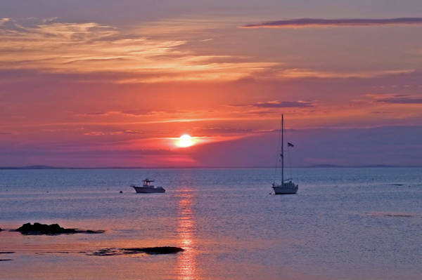 Photograph - Sunset Sailing - Gloucester, Ma by Joann Vitali