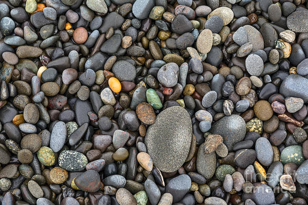 Wall Art - Photograph - Rocks Along The Rialto Beach In Olympic National Park Of Washing by Jamie Pham