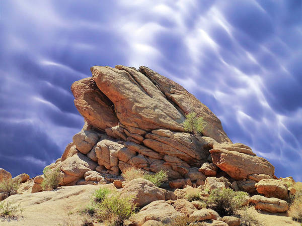 Photograph - Rocks At Joshua Tree by Dominic Piperata