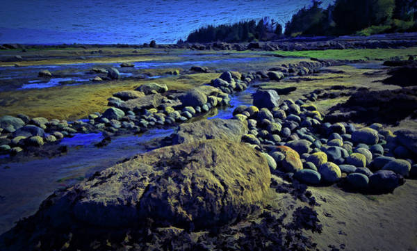 Digital Art - Rocks At Low Ebb by Richard Farrington