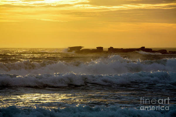 Wall Art - Photograph - Rocks At Palm Beach At Sunrise by Sheila Smart Fine Art Photography