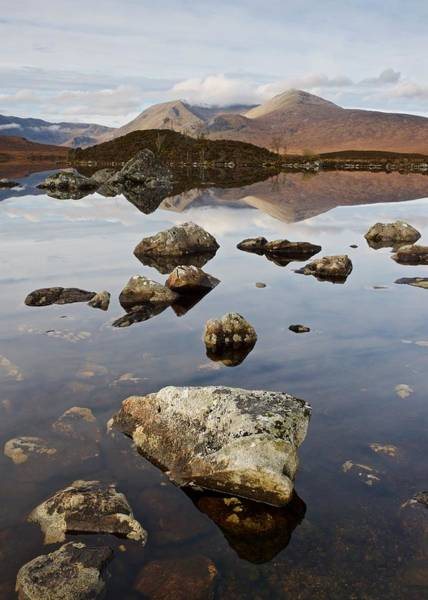 Photograph - Rocks On Lochan Na H-achlaise by Stephen Taylor