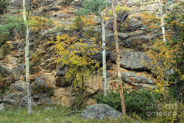 Photograph - Rocks by Pete Hellmann