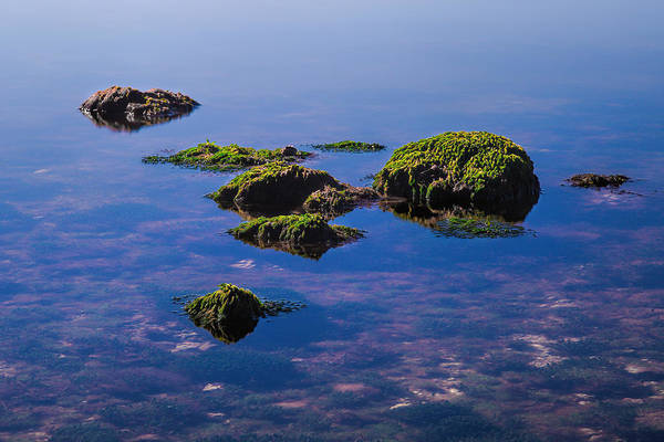 Photograph - Rocks3173 by Rudy Umans