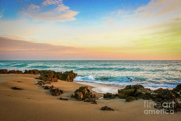 Art Print featuring the photograph Rocky Beach by Tom Claud