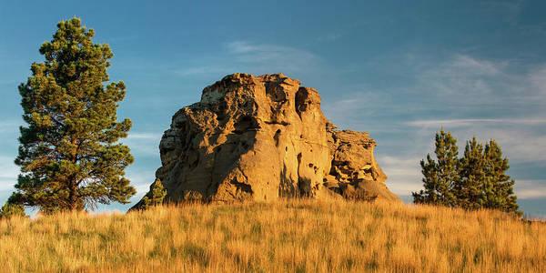 Photograph - Rocky Beauty by Todd Klassy