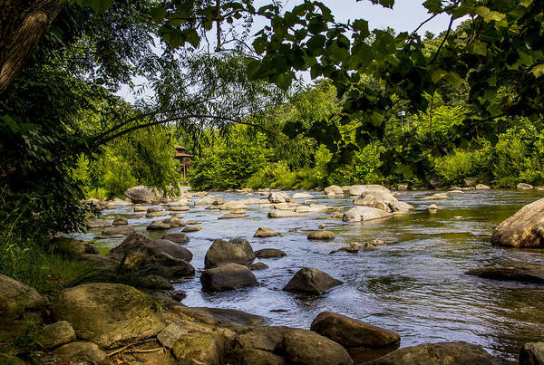 Photograph - Rocky Broad River by Allen Nice-Webb