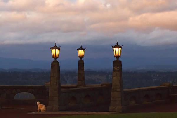 Photograph - Rocky Butte Lamps by Wes and Dotty Weber