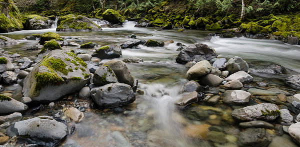 Photograph - Rocky Clear River by Margaret Pitcher
