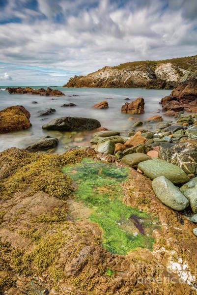 Wall Art - Photograph - Rocky Coastline  by Adrian Evans
