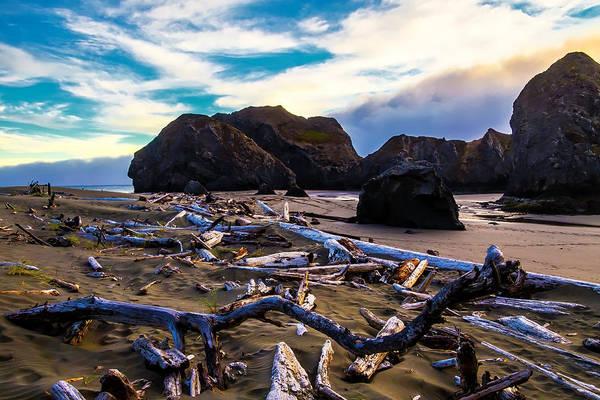 Costal Photograph - Rocky Coastline by Garry Gay