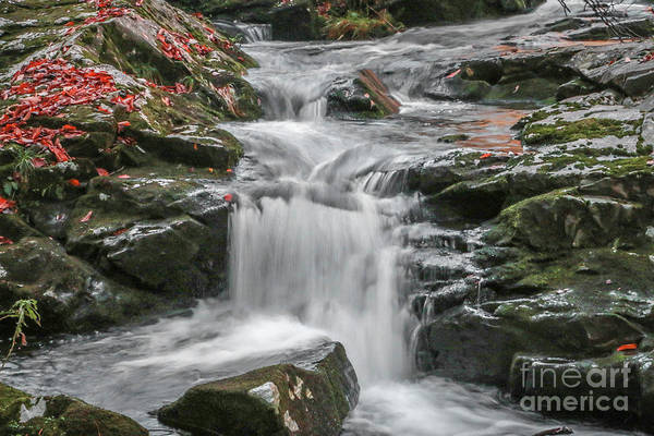 Photograph - Rocky Falls And Red Leaves by Tom Claud