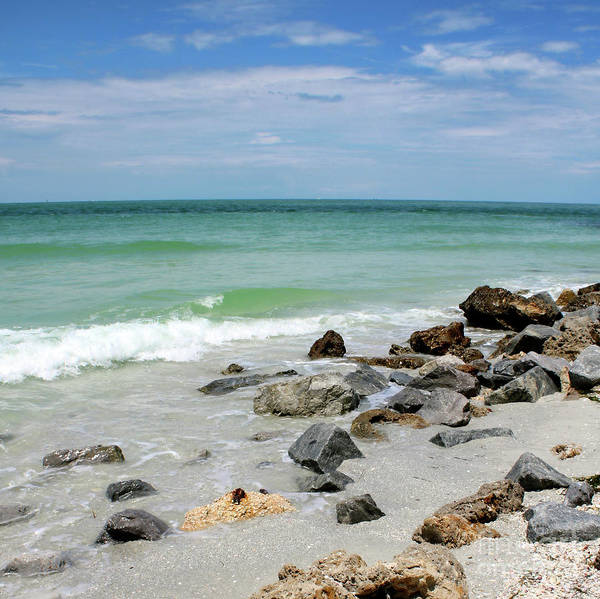 Photograph - Rocky Florida Beach by Carol Groenen