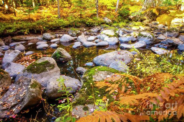 Photograph - Rocky Maine Brook by Alana Ranney