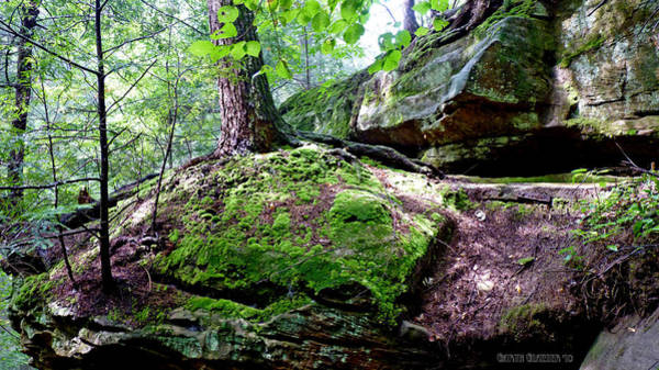Wall Art - Photograph - Rocky Moss Ledge At Ash Cave by Garth Glazier