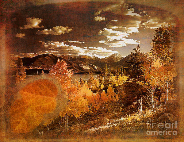 Rocky Mountain Gold 2015 Art Print