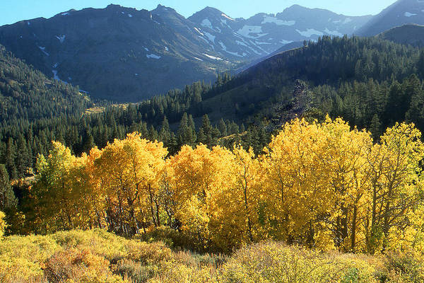 Photograph - Rocky Mountain High Colorado - Beautiful Autumn Landscape by Peter Potter