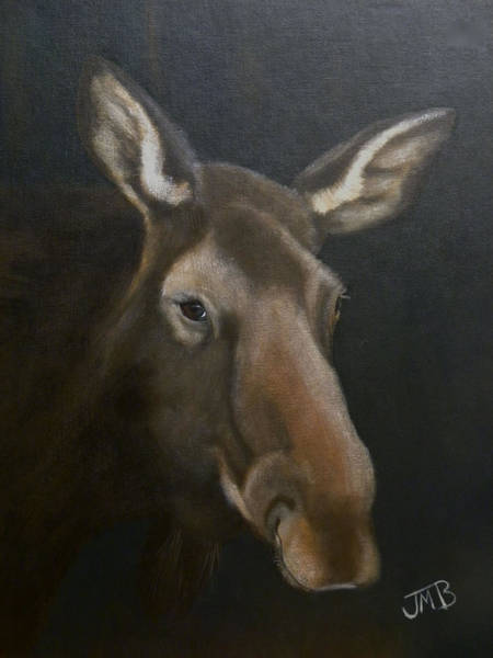 Rocky Mountain House Moose Art Print by Janice M Booth