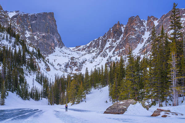 Wall Art - Photograph - Rocky Mountain Snowshoer by Darren White