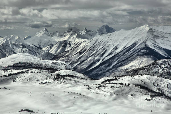 Photograph - Rocky Mountain Views From The Slopes Of Sunshine by Adam Jewell