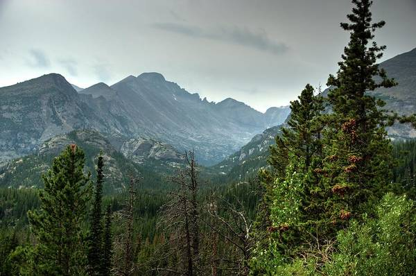 Photograph - Rocky Mountains National Park 1 by Dimitry Papkov