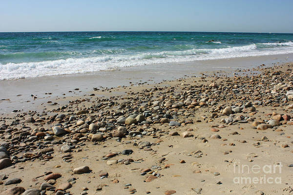 Photograph - Martha's Vineyard Beach by Carol Groenen
