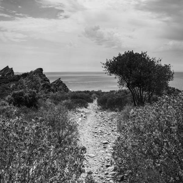 Photograph - Rocky Path To The Sea In Mono - Square by Georgia Fowler