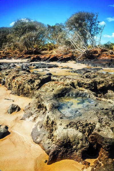Photograph - Rocky Pools At Low Tide by Debra and Dave Vanderlaan