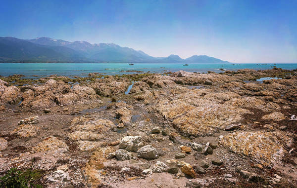 Photograph - Rocky Shore Kaikoura New Zealand by Joan Carroll