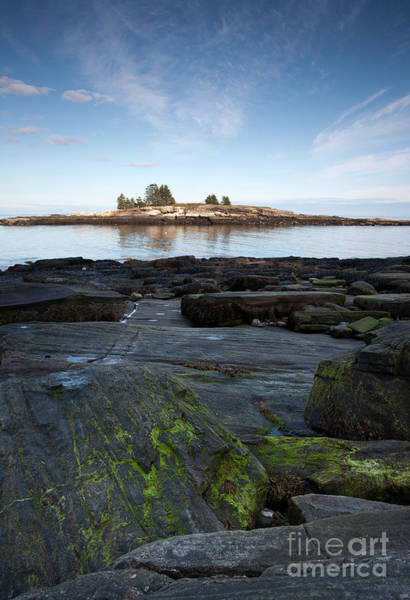 Photograph - Rocky Shore, New Harbor, Maine #8039-8041 by John Bald