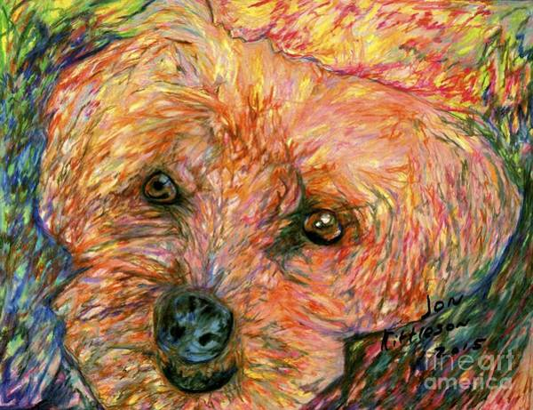 Drawing - Rocky The Dog by Jon Kittleson