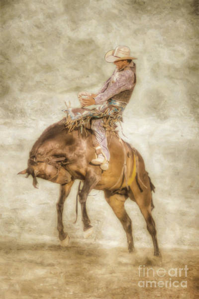 Bucking Bronco Digital Art - Rodeo Bronco Riding Four by Randy Steele