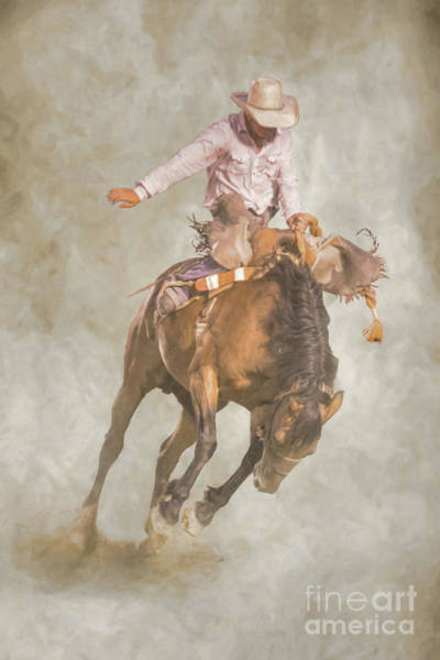 Bucking Bronco Digital Art - Rodeo Bronco Riding Two by Randy Steele