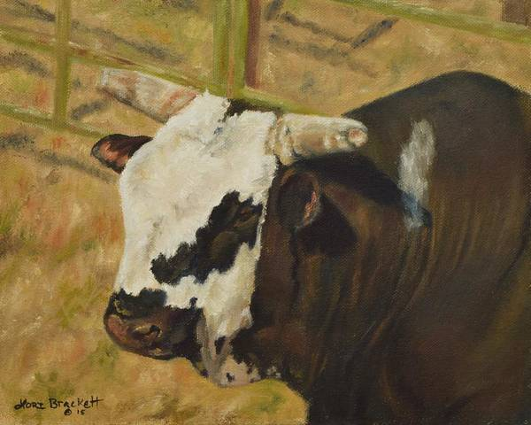 Painting - Rodeo Bull 6 by Lori Brackett