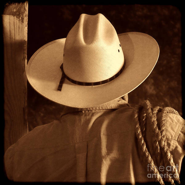 Photograph - Rodeo Cowboy by American West Legend By Olivier Le Queinec