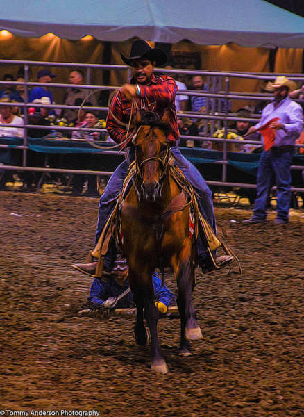 Norco Photograph - Rodeo Rawhide Race 2 by Tommy Anderson