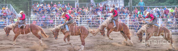 Bucking Bronco Digital Art - Rodeo Stages Of The Ride by Randy Steele