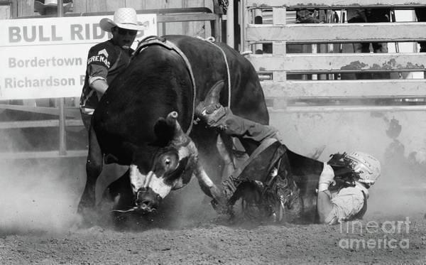 Lethbridge Photograph - Rodeo Stars 7 by Bob Christopher