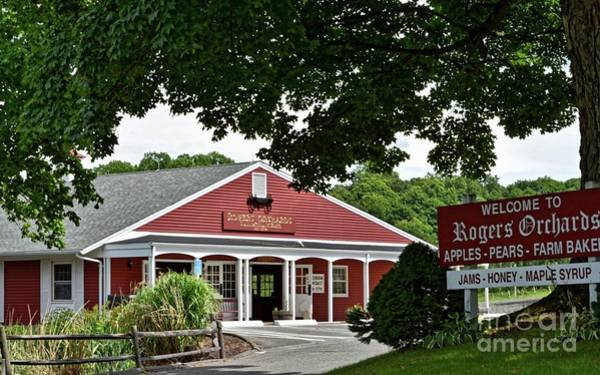 Waterbury Photograph - Rogers' Orchards by Dani McEvoy